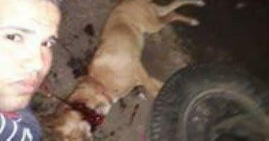 الداخلية تلاحق شابا ذبح كلبا بالمنوفية ونشر صوره على مواقع التواصل