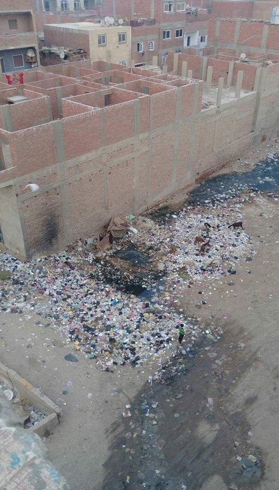 معاناة أهالي أبو النمرس بالجيزة لانتشار القمامة