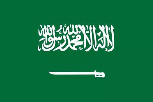 السفارة السعودية في القاهرة تُطلِق حملة للتعريف بحقوق الإنسان في المملكة