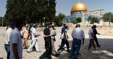 مستوطنون إسرائيليون يواصلون اقتحام المسجد الأقصى من باب المغاربة
