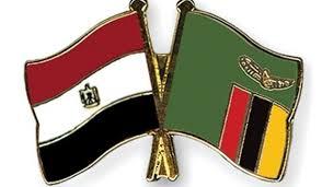مصر تقدم معونة دوائية إلى دولة النيجر