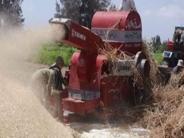 مصرع ربة منزل التف حولها سير ماكينة حصاد القمح بالفيوم