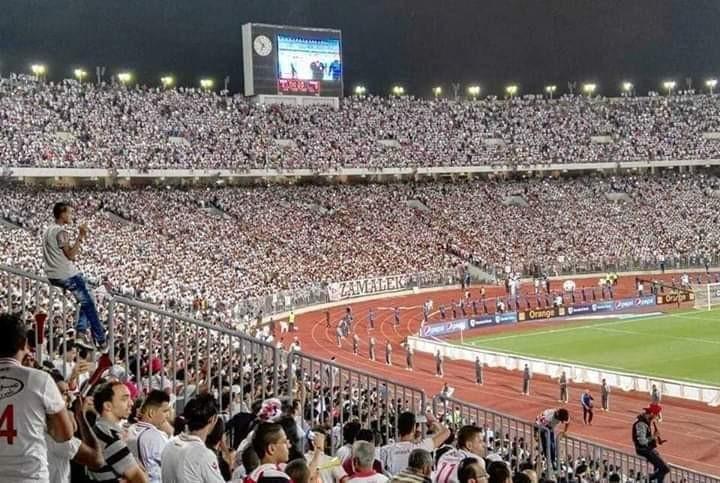 أمير مرتضي : ننتظر جمهور الزمالك فى برج العرب للإحتفال بالفوز بالكونفدرالية