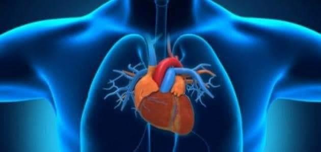 إنطلاق نهائيات أولمبياد شباب أطباء القلب