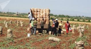 وزير الزراعة السوري: أضرار القطاع الزراعي والحيواني بلغت 16 مليار دولار