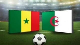 مشاهدة مباراة الجزائر والسنغال بث مباشر اليوم الخميس 27-06-2019
