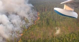 تقلص مساحة الحرائق في مناطق سيبيريا الروسية لأول مرة منذ أسابيع