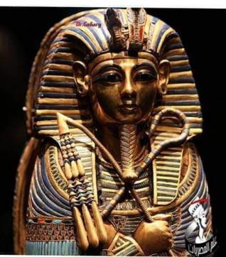 علم المصريات علي المقهي الثقافي