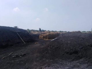 حملة تفتيش على مكامير الفحم ببرقاش
