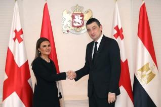 مصر وجورجيا تتفقان على تفعيل عمل اللجنة المشتركة للتعاون الاقتصادى