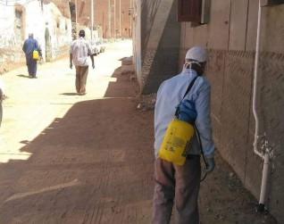 حملات تعقيم وتطهير لشوارع منطقة الجزيرة بمدينة أسوان