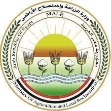 الزراعة توافق على تمويل جديد لمشروع البتلو بـ 306 مليون جنيه لصغار المربيين والمزارعين