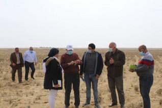 البحث العلمى وشركة الريف المصرى تدشنا الحملة القومية للنهوض بالزراعات الصحراوية فى المغرة