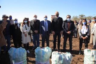 التضامن وبيبسيكو مصر وكير الدولية تحتفل بأول موسم حصاد لمحصول البطاطس ببني سويف