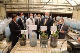 وزير الزراعة: يفتتح صوبة اقلمة النخيل بمركز بحوث الصحراء