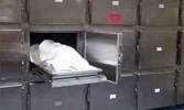 العثور على جثة طفل رضيع مقتولاً بالبساتين