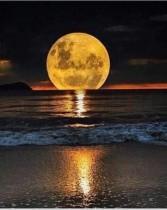 أنت والقمر