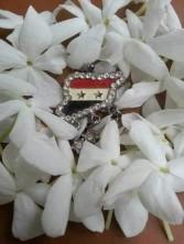 عبق ياسمين سوريا