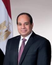 """""""فهيم"""" يهنئ الرئيس السيسي ووزير الداخلية بمناسبة ذكرى عيد الشرطة ٦٩"""