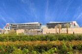 جامعة الإمارات تشارك باليوم العالمي لمكافحة التصحر والجفاف