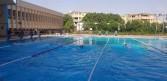 نخنوخ يفوز بذهبية ١٠٠ متر ظهر ببطولة الصعيد  للسباحة